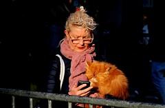 La zia e la gattona (rossolev) Tags: roma italia street portrait ritratto animali cat sole zia gatto gattini gattoni arancione colour colore piazza capitale bellezza strada telefono cellulare whatsapp occhi messaggio