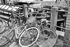 københavn ... (andrealinss) Tags: københavn denmark dänemark kopenhagen schwarzweiss street streetphotography streetfotografie bw blackandwhite bicycle fahrrad andrealinss 35mm analog leica leicam6