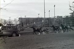 Berlin Trabrennbahn Mariendorf 12.1.2020 (rieblinga) Tags: berlin tempelhof mariendorf trabrennbahn renntag 1212020 pferde sport rennen wetten analog revue ac4p1 agfa apx 400 adox rodinal 150 sw