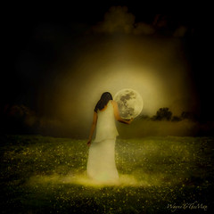 'Till the Stars Fall From The Sky (WayneToTheMax) Tags: love stars moon sky fall ground romance glow