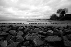 Strelasund, Steine (tom-schulz) Tags: eosm3 meike1228 monochrom bw sw rawtherapee gimp stralsund thomasschulz wasser sund strelasund himmel wolken steine wellenbrecher vogel