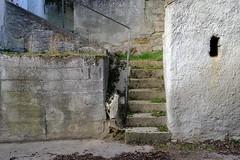 Straning (Harald Reichmann) Tags: straning kellergasse weinkeller stufen stiege