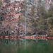 Quarry Pond. Pinnacle Mountain State Park. Arkansas. 2020.