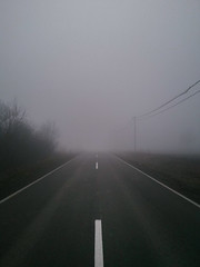 Image of a road through a foggy (shixart1985) Tags: autumn nature road fog outdoors landscape tree summer asia beijing china cold day dry fall forest growth no people nobody rain scenic tranquillity wild winter beautiful december direction empty foggy mist misty mood morning path scary scene scenery sky travel traveling wood woods anxiety depression