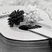 Guitar Musical Instrument Music Edited 2020