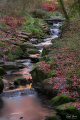 Nature-0658 (GaelHervePhoto) Tags: nature naturephotography water waterfalls longexposure poselongue rochers rocks leaves trees river chutes cascade eau parc nantes gaudiniere parcdelagaudiniere