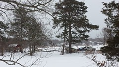 A Snow-Filled Afternoon Out... (Art of MA Foto Stud) Tags: wareham winter snow i195 ice woods forest trees cars vehicles branches massachusetts interstate