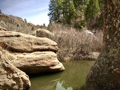 The Great Outdoors (wjaachau) Tags: colorado landscape nature outdoor adventure hiking trail park scenic scenery trees evergreen rock boulder canyon forest pathway walking river lake