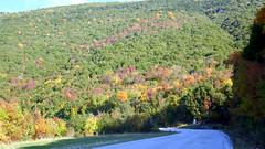 Autumn Colours (RobW_) Tags: autumn colours vikosaoös national park zagori road epirus greece saturday 23nov2019 november 2019