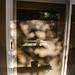 Sliding Glass Door Reflection 06