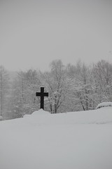 winter cross (mnsc) Tags: cemetary naturallymonochrome