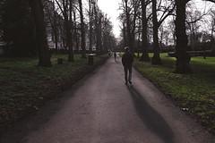 Richards Shadow [13/366 2020] (_ _skdotcom_ _) Tags: chapelfield gardens norwich trees path park shadow