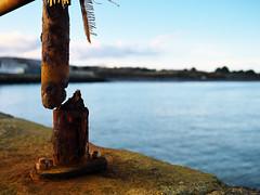 (turgidson) Tags: panasonic lumix dmc g9 panasoniclumixdmcg9 panasonicg9 micro four thirds microfourthirds m43 g lumixg mirrorless 20mm f17 asph panasonic20mmf17asph 20mmf17 20mmf17asph prime lens primelens pancake hh020 silkypix developer studio pro 9 silkypixdeveloperstudiopro9 raw harbour harbor bray wicklow ireland rust railing sea irish irishsea la mer lamer p1045603 pier low angle lowangle broken displaced