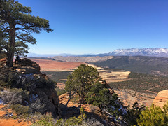 Pine Valley Mountains and Smith's Mesa from Red Butte area Zion Utah (swissuki) Tags: redbutte zion pinevalleymountain smithsmesa ut utah mountain landscape largelandscape nature national park