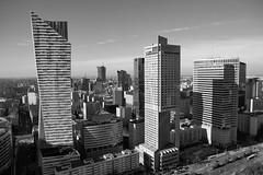 Warsaw (radimersky) Tags: warszawa warsaw day dzień jesień autumn sunny słonecznie blackandwhite czarnobiałe czarnobiały bw monohrome microfourthirds 43 fourthirds bluesky sky niebo wieżowce skyline skyscraper city miasto capital poland polska dcgx9 panasonic lumix lumixgvario1260f3556 bulildings cityspace landscape architecture architektura 3840x2560 fhd europa europe stolica skylines