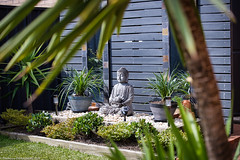 Backyard Buddha (The0dora Photography) Tags: garden buddha the0doraphotography rf70200f28 backyard canoneosr