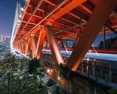 Red Triangle(Repost) (kevinho86) Tags: city bridge colour art architecture canon cityscapes wideangle citylights chongqing lightshadow 橋 eosr ef1635f4lusm citynights