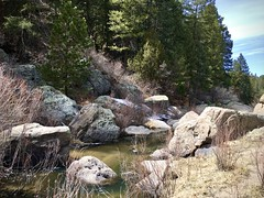 """I prefer the scenic route."" (wjaachau) Tags: colorado landscape nature rock canyon park forest pathway trees evergreen boulder scenic scenery hiking trail adventure outdoor"