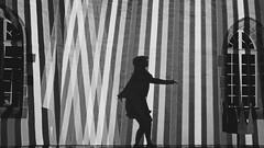 TO DANCE (arteys) Tags: murten morat lichtfestival lichtkunst farben lichtfarben kunst luci schweiz svizzera friburg fribourg festival lightfestival festivaldeslumièresmorat murtenlichtfestival lichtspektakel sony zeiss a6000 nacht color colori city oldcity 2020 murten2020 ville moratstadtstadt murtenmorat 2020lichttanzkunstkünstlerartistelichtzauberlumierelichtfestkanton