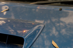 Never-ending (OzzRod) Tags: pentax k5 smctakumar55mmf2 reflection smoky sun ash bonnet hood vehicle bushfire