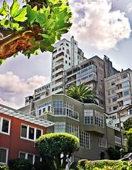 Lombard Street (Beatrix MK) Tags: lombardstreet sanfrancisco sanfranciscobayarea bayarea california ca city urban