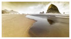 In the fog of time (Dans le brouillard du temps) (PATRICE OUELLET) Tags: patricephotographiste inthefogoftime dans le brouillard du temps rivages mer shores sea océan walkers marcheurs fog time poësia landsofpoësia
