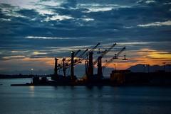 Lumières dans le port de Papeete (claudiemenoud) Tags: port papeete tahiti polynésiefrançaise harbour nui nuages cielnuages coucherdesoleil sunset grues silhouette bleu blue groupenuagesetciel nuit night nikon b 700 coolpix
