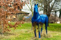 Blue horse (Lense23) Tags: horse pferd garten garden skulptur sculpture jena thüringen germany deutschland colorful bunt