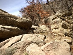 """Life is better in hiking boots."" (wjaachau) Tags: colorado park canyon lake boulder rock climbing hiking forest pathway nature landscape scenic scenery adventure outdoor trees evergreen wildife"