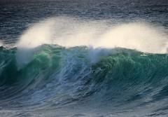 Wave action (thomasgorman1) Tags: wave waves surf breaking curl shore beach sea ocean canon molokai water spray mist shorebreaker island hawaii travel rolling scenic