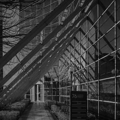 76 Baggot Street~ in Explore (Wendy:) Tags: explored dublin baggotst lines angles mono reflections glass samstephenson bordnamona architecture pergola windows