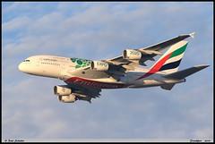 AIRBUS A380 861 EMIRATES A6-EOJ 182 Frankfurt décembre 2019 (paulschaller67) Tags: airbus a380 861 emirates a6eoj 182 frankfurt décembre 2019