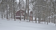 Gimo 3/2 2019. (johnerlandaxelsson@gmail.com) Tags: gimo uppland sverige vinter natur landskap landscape johnaxelsson