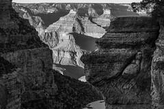 (janwellmann) Tags: grandcanyon naturephotography nature canyon hike trail
