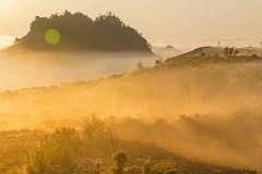 _MG_8262-64.1.0212.Tân Lập.Mộc Châu.Sơn La (hoanglongphoto) Tags: asia asian vietnam northvietnam northernvietnam northwestvietnam landscape scenery vietnamlandscape vietnamscenery mocchaulandscape nature naturelandscape sunrise clouds mountain flanksmountain vietnammountainouslandscape cloudsofmocchau canon canoneos5dmarkii tâybắc sơnla mộcchâu tânlập thiênnhiên thiênnhiênmộcchâu natureinmocchau bìnhminh mây mâymộcchâu núi sườnnúi phongcảnhvùngnúi topmountain dãynúi đỉnhnúi mâyluồnmộcchâu forest theforest rừng hoanglongphoto bìnhminhmộcchâu canonef24105mmf4lisusm hoamậnmộcchâu earlyfrost earlymorningfog fog mist fogofmocchau sươngsớmmộcchâu sươngmùmộcchâu