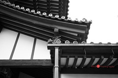 3056j (Bethie Inthesky) Tags: shrine japan buddhist buddha temple kyoto visitjapan japantrip