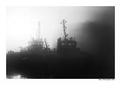 """""""Dans Les Traces Du Poulpe Ou Pour L'Attendrir Faut Taper Dessus... 39"""" (TBWLC Photography) Tags: fdrouet tbwlc nb bw monochrome port bateau ship boat brume myst saintnazaire penhoët nikon d750"""