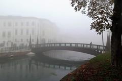 Foggy weather in Treviso - The University bridge (Sokleine) Tags: fog foggy brouillard pont ponte bridge silhouette heritage patrimoine treviso veneto vénétie italia italie italy italien eu r europe reflets reflection