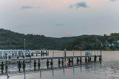 Pink and Red Sunset over the Bay (Merrillie) Tags: pinksun woywoy hazy sunset nature australia kariong redsun red trees brisbanewater sun pink beautypoint smokehaze sky phegansbay nsw centralcoast horsfieldbay mountain