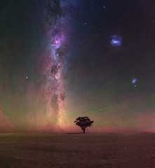 Summer Milky Way at Beverley, Western Australia (inefekt69) Tags: panorama tree way lone milky ice night rural photography long exposure mosaic australia southern western ms dslr stitched cosmos hemisphere sky stars landscape 50mm ancient nikon outdoor space great galaxy astrophotography astronomy core rift d5500 red summer silhouette prime farm wheat carina filter nikkor beverley hoya wheatbelt intensifier skytracker airglow ioptron cloud clouds small large smc lmc milkyway magellanic
