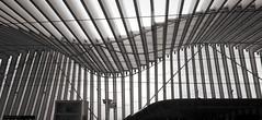 AV stazione Mediopadana Reggio Emilia (Bardazzi Luca) Tags: calatrava arquitectura architecture city citta building architettura europe age ancient luca bardazzi desktop wallpapers image olympus em10 micro four thirds 43 foto flickr photo picture internet web railway treno train ferrovia alta velocita reggio emilia