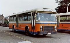 4017 31 (brossel 8260) Tags: belgique bus sncv namur