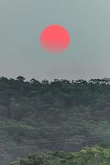 Pink and Red Sunset from Smoke Haze (Merrillie) Tags: pinksun woywoy smokehaze sunset nature australia kariong redsun red trees brisbanewater nsw pink beautypoint hazy sky phegansbay sun centralcoast horsfieldbay mountain
