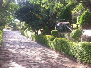 Surroundings | Africa Safari Arusha