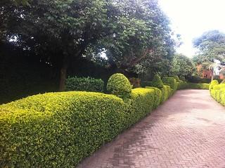 Surroundings | Africa Safari Arusha760822205527_1346759760917495009_n