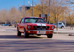Stang (Miguel Ángel Prieto Ciudad) Tags: car outdoors vintage transportation history speed driving sport sports sportcar red street ford mustang classic sonyalpha alpha3000