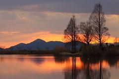Dusk (Teruhide Tomori) Tags: landscape marsh water sunset shiga hikone japan japon nature light cloud sonemarsh 曽根沼 自然 風景 日没 滋賀県 彦根 水辺 日本 dusk happyplanet asiafavorites