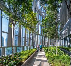 18 Robinson, Singapore (farc12468) Tags: 18robinson officetower skyscraper singapore tallbuilding kohnpedersenfox