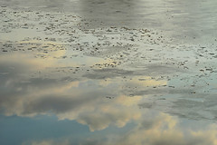 1PRO_5105 (Radu Pavel) Tags: radu radupavel pavel fotononstop cosmos ©radupavelallrightsreserved ©radupavelallerechtevorbehalten ©radupaveltodoslosderechosreservados ©radupavel版権所有 nature natur naturaleza 自然 colours farben colores 色 landscape landschaft paisaje 風景 winter invierno 冬 sky himmel cielo 天 outdoor alairelibre imfreien ルーマニア world welt mundo 世界 light licht luz 光 tranquilo ruhig geruhsam serene peaceful lake see lago 湖 water wasser agua 水 ice hielo eis 氷 abstract abstrakt abstracto 抽象 dream traum sueño 夢 2020