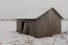 Old Barn With Broken Doors (k009034) Tags: copyspace finland ruralscene scandinavia tranquilscene abandoned agriculture badcondition barn barnhouse broken building cold coldness covered door farm farming frost grey nature nopeople old open roof rural sky snow wall weather white winter wooden